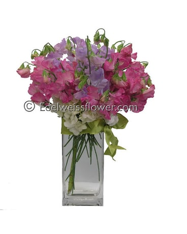 To My Sweetpea Flower Bouquet
