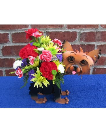 MINIATURE YORKIE PLANTER-for local delivery only