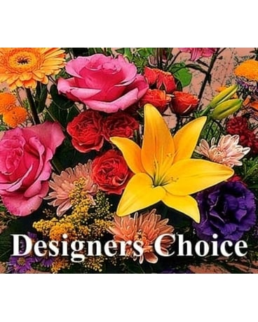 Designer''s Choice