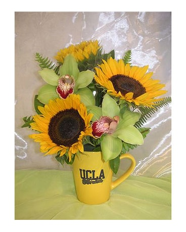 UCLA Mug O''Sunshine