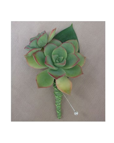 Succulent Boutonniere - $18 00 in West Los Angeles CA