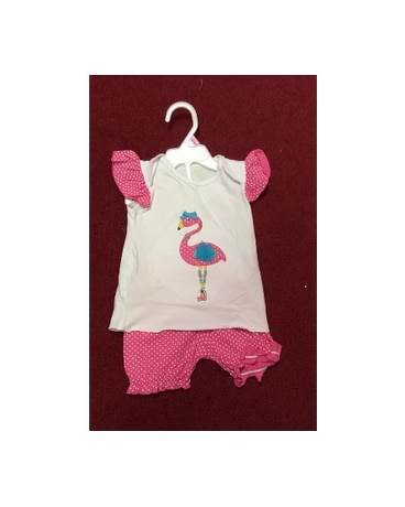 Flamingo Shirt and Shorts Set