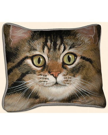 Tabby Pillow