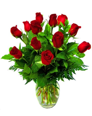 One dozen classic red roses.