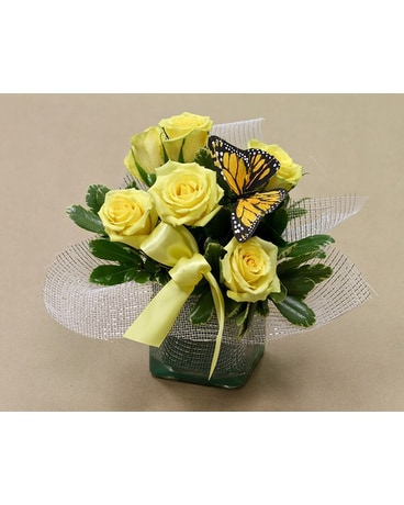 Lemon Garden Rose
