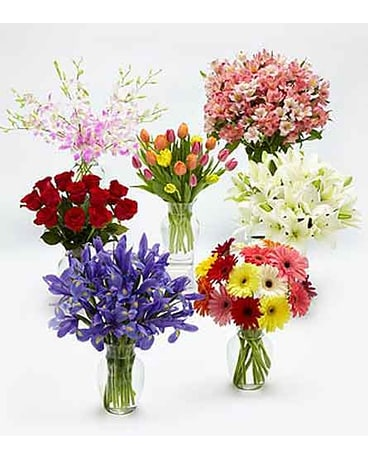Monthly Flower Gift Plan