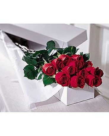 12 Red Roses Boxed