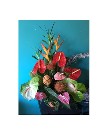 Tropical Arrangement - Deal of the Day
