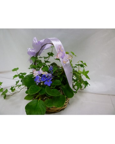 Beautiful Butterflies Basket
