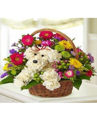 DOGGIE BASKET