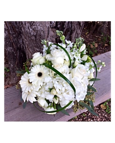 An Empty Vase Designs Delivery Boerne Tx An Empty Vase