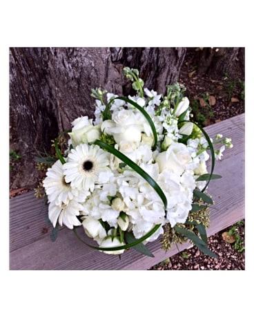 White Bliss In Boerne Tx An Empty Vase