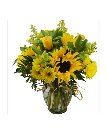 GOLDEN SUNFLOWERS Deluxe