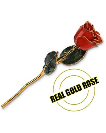 Real Gold Rose