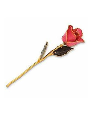 Real Rose Dipped in 24KT AMAZING  COLORS NOW