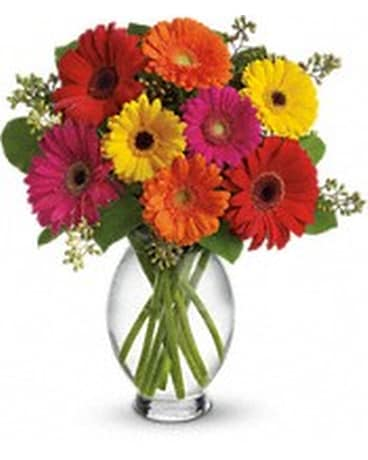 Bright Gerbera Vase In Bethany Ok Anns Secret Garden