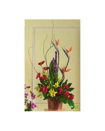Birds of Paradise Basket