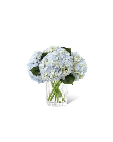 Hydrangea Bouquet In Chicago Il La Salle Flowers