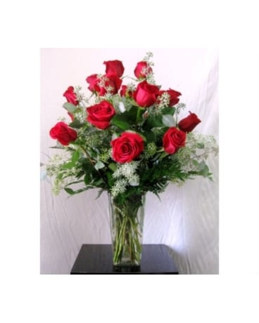Dozen Premium Long-Stem Red Roses