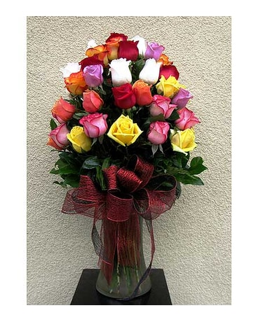 50 multi-color roses