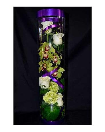 Orchid Terrarium In Albuquerque Nm Silver Springs Floral Gift