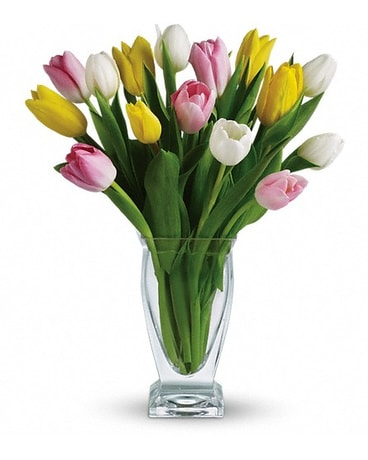 Teleflora's Tulip Treasure with 20 Tulips