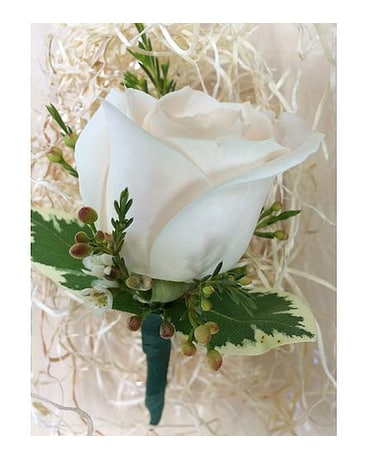 Cream rose Boutonniere