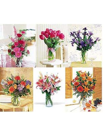 Citti's Florist 6 or 12 Months of Flowers