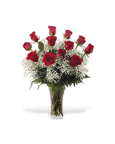 12 Red Roses and Babies Breath