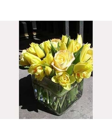Rosy Tulip Arrangement