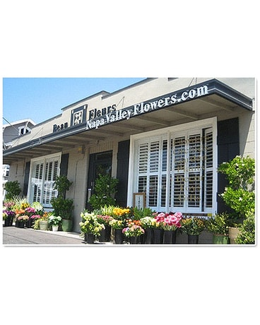 This is our shop in the beautiful Napa Valley