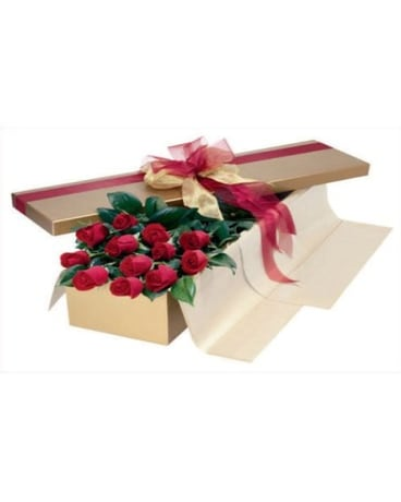 Red Roses Boxed