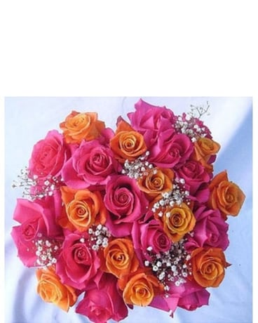24 Pink and Orange Roses