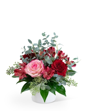Petit Red Velvet Flower Arrangement
