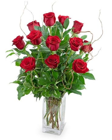 Dozen Red Roses with Willow Flower Arrangement