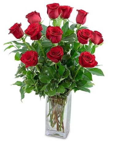 Deluxe Dozen Red Roses Flower Arrangement