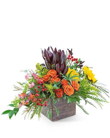 Aurora Moment Flower Arrangement