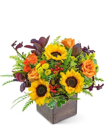 Laurel Canyon Flower Arrangement