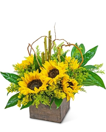 Sunflower Wonderland Flower Arrangement
