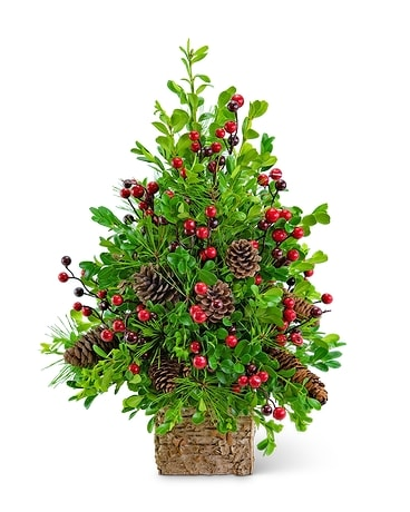 Adorned Boxwood Tree