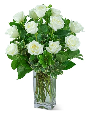 White Roses (12) Flower Arrangement
