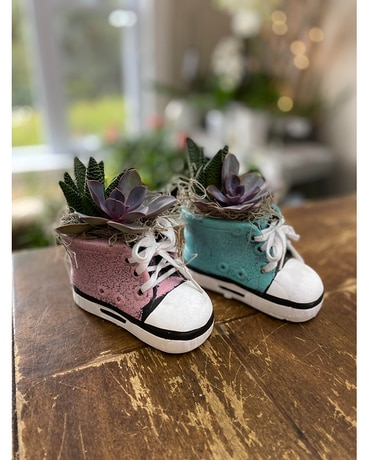 Mini Bootie Succulent (pink or blue) Gifts