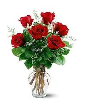 Six Red Roses in a vase Flower Arrangement