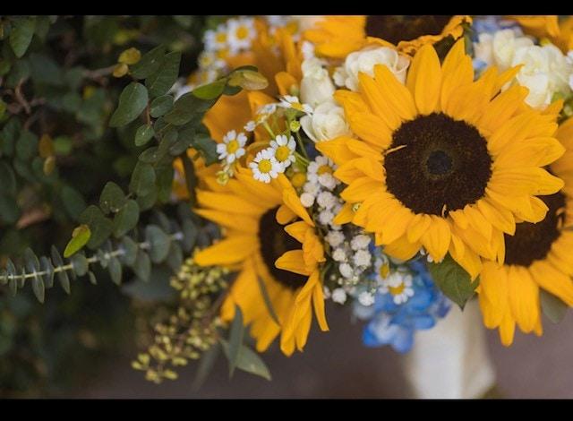 close up of a sunflower bouquet