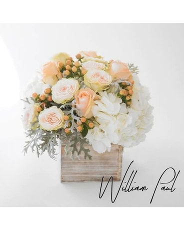 Blush Box by William Paul