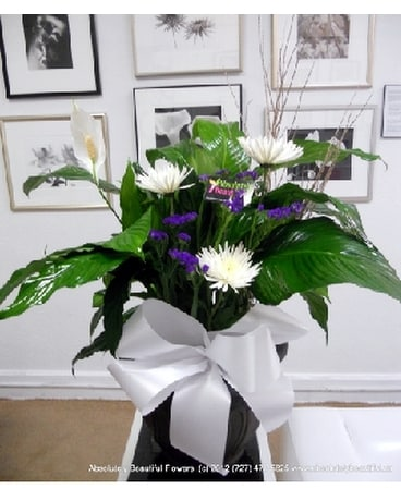 Peace Lily Flower Arrangement
