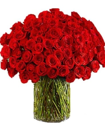 One Hundred Premium Roses