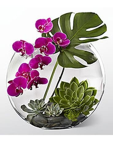 Orchid Terrarium Flower Arrangement