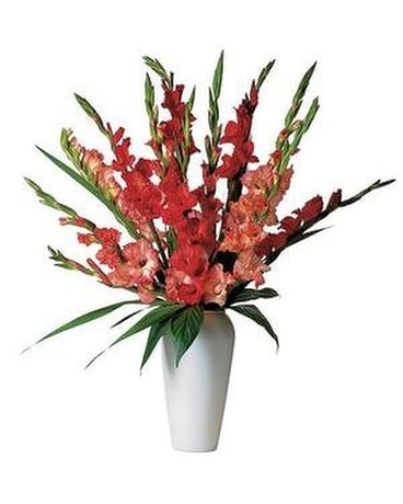 Glorious Gladioli - Flower Arrangement