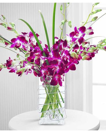 Colorful Dendrobium Orchids Flower Arrangement